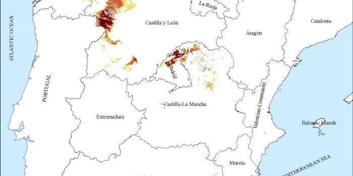 The Mycorrhizal Association Boletus Edulis – Cistus Ladanifer: Effective Niche And Climatic Adaptation In Spain