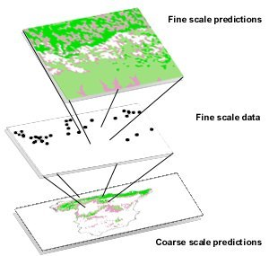 A Method To Model The Distribution Of Species Using Small Samples